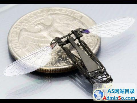 翅膀仅3mm 美国军方研制出昆虫间谍监测装置