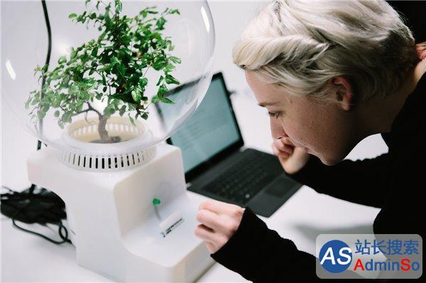 """微软想让你和植物""""聊天"""" 没有不可能"""