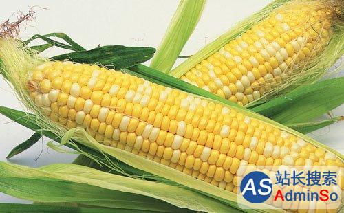 多位学者自愿吃转基因玉米,呼吁加快产业化