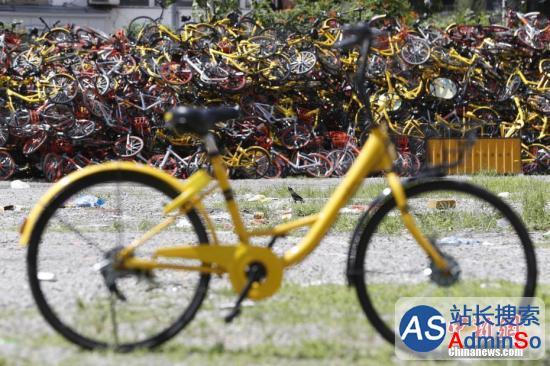 共享单车投放