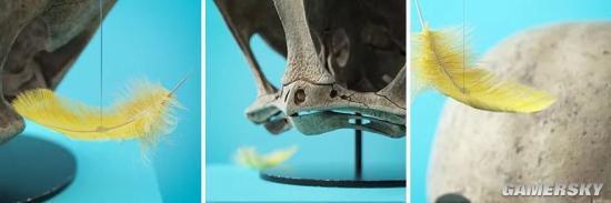 3D艺术家创作的卡通人物头骨化石