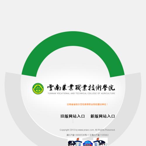 www.ynavc.com网站缩略图