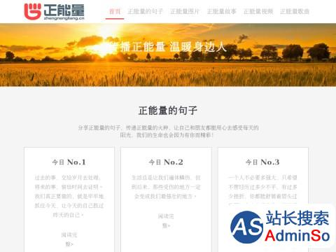 www.zhengnengliang.cn网站缩略图